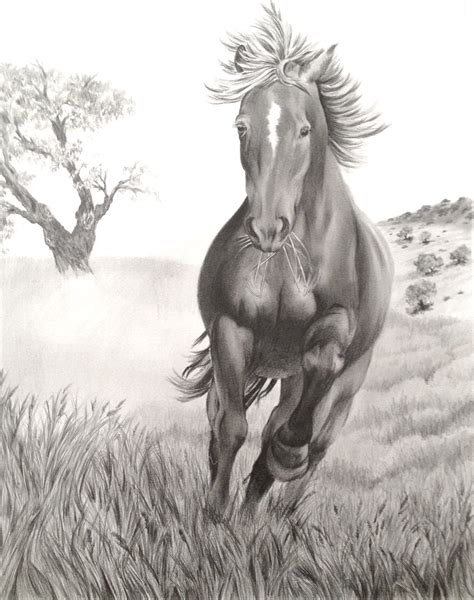 horse drawing – Defining the West